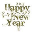 Best Business Opportunities 2011
